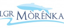 morenka-logo-screen1-630x277